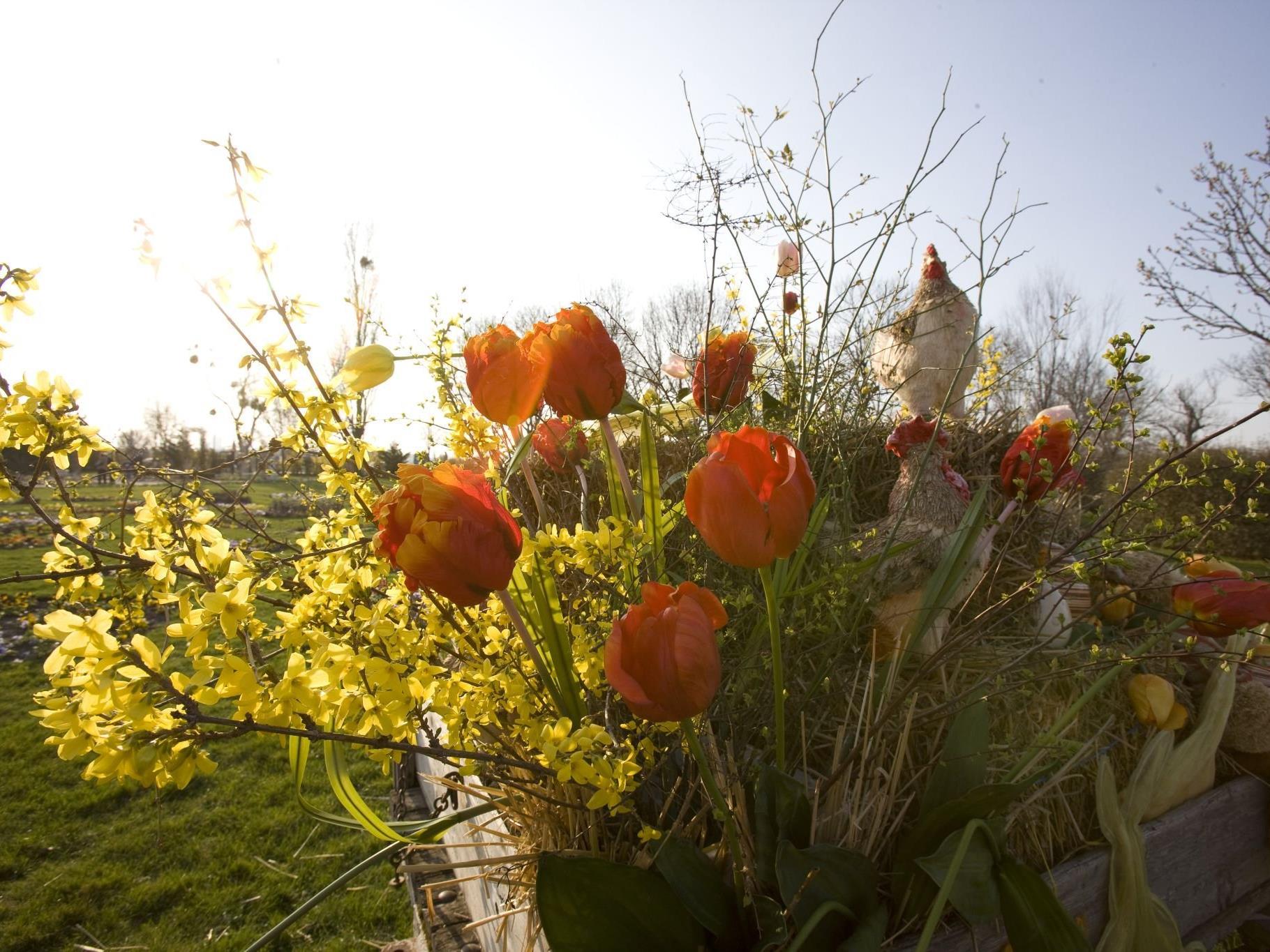 Ostermarkt in den Blumengärsten Hirschstetten 2017.