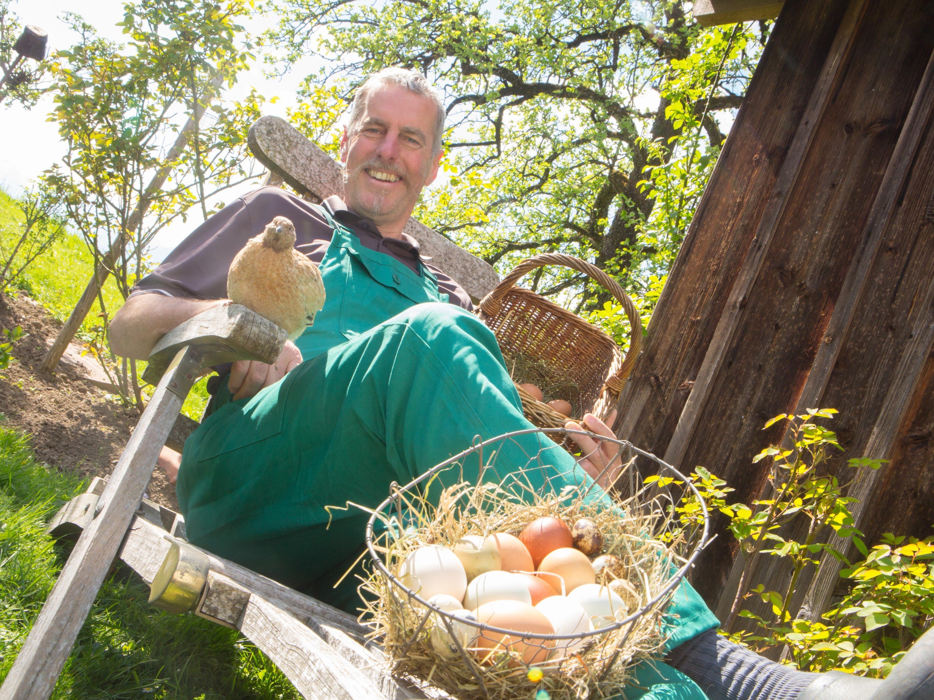 Bunte Eier das ganze Jahr über
