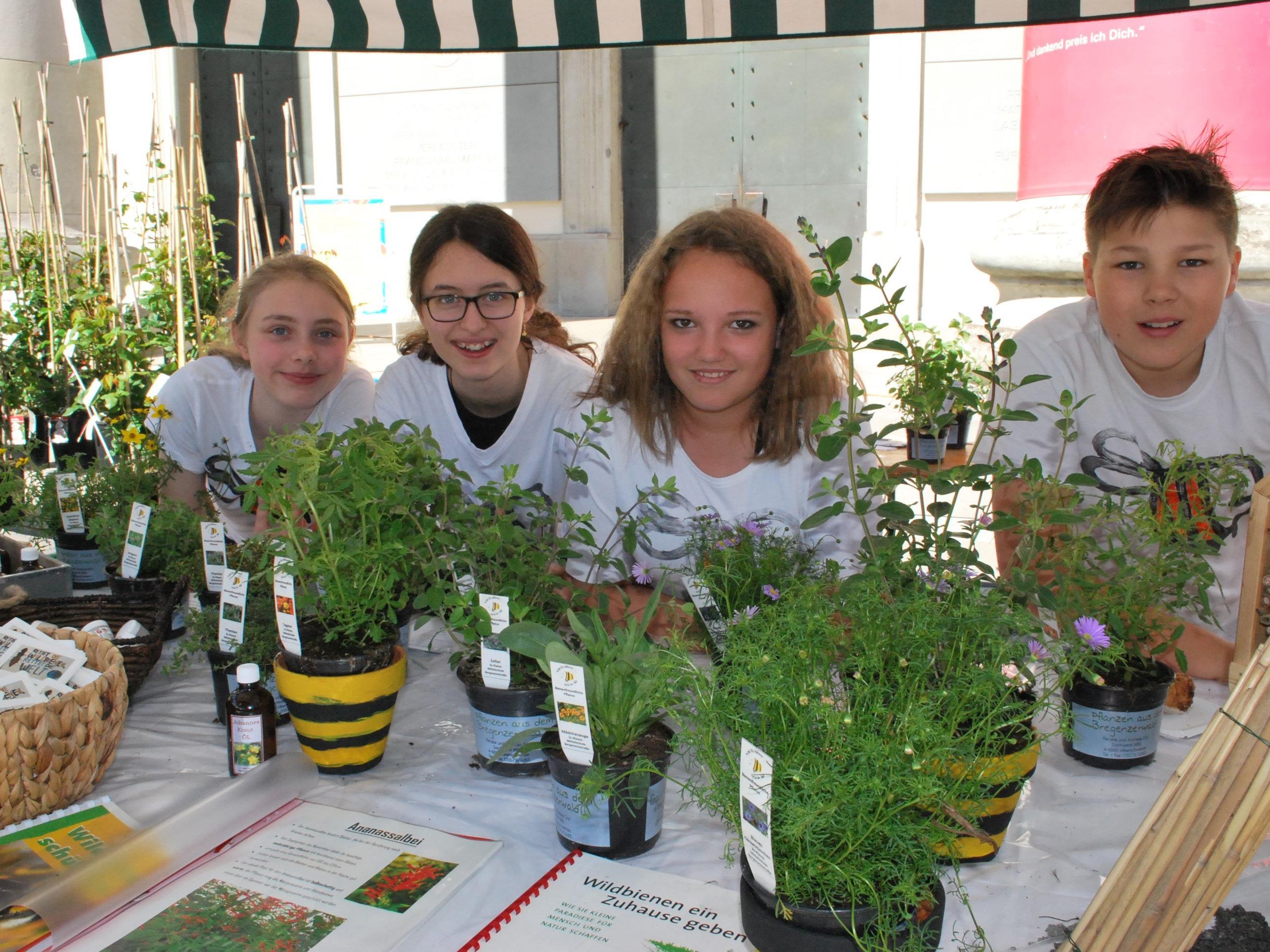 Schüler setzen sich ein für die Erhaltung der Wildbienen