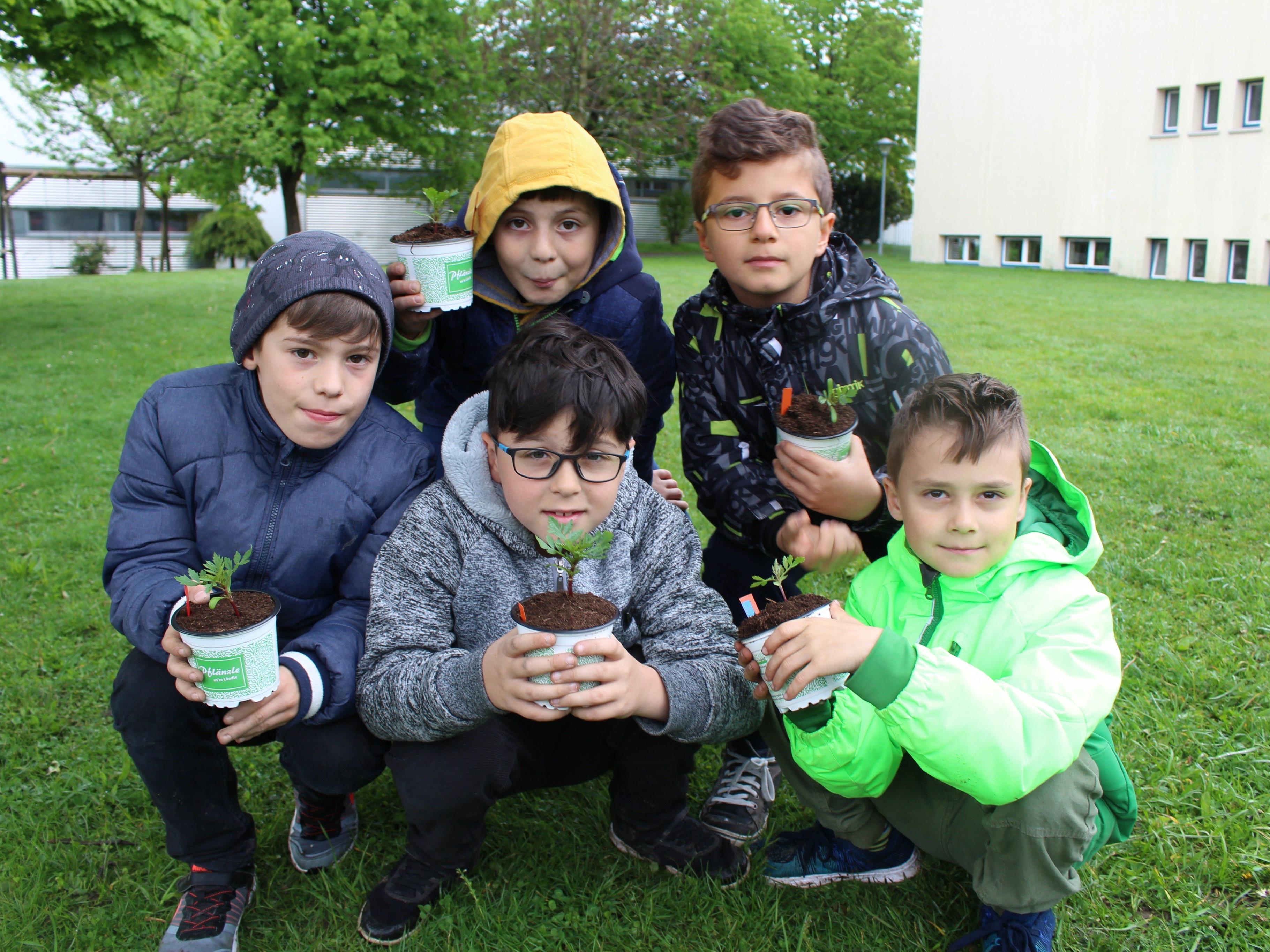 Gärtnern macht glücklich: David, Hasan, Öner, Jon und Berkay