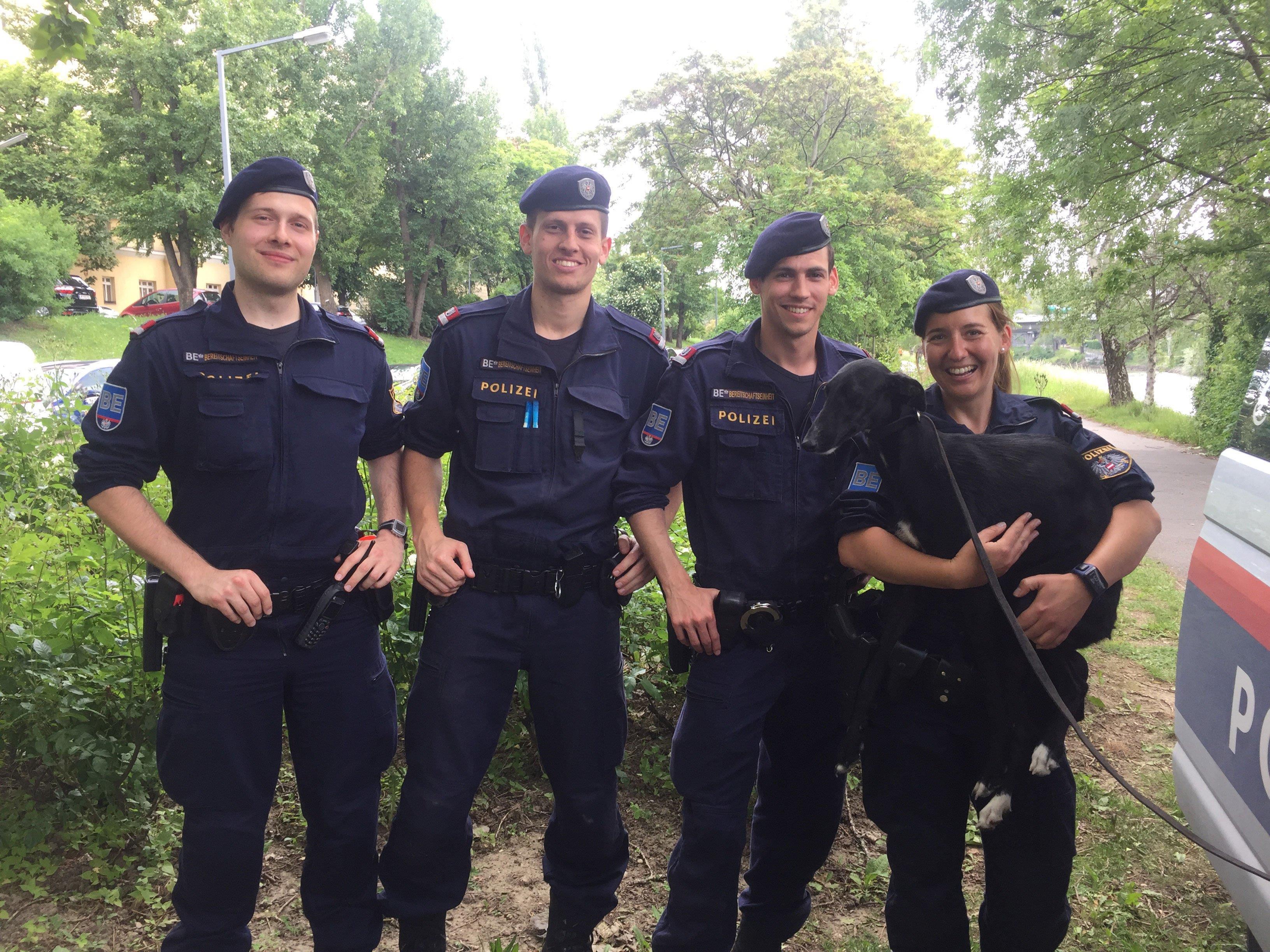 In Brigittenau konnte ein entlaufener Hund von Polizisten eingefangen werden