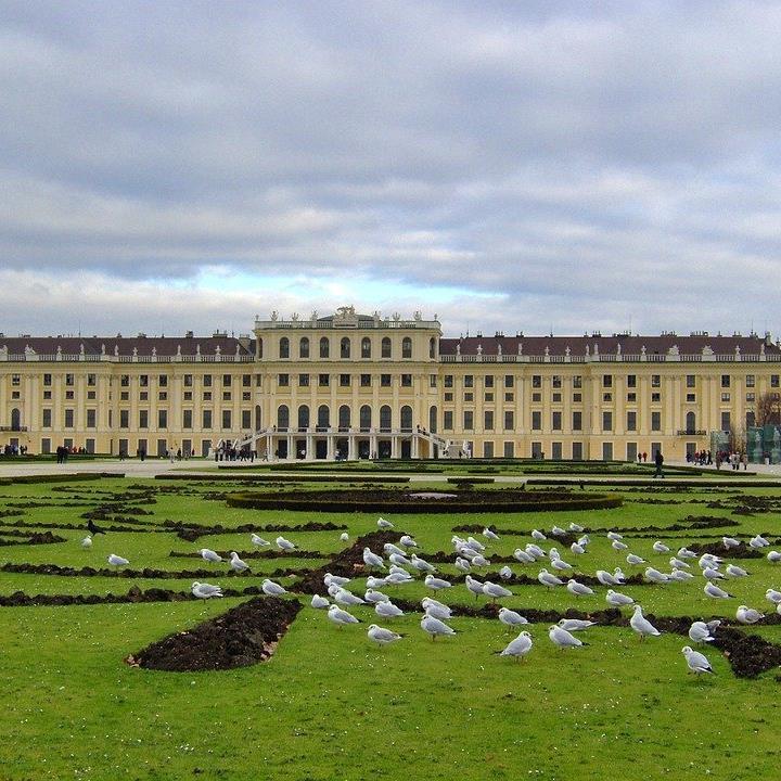 Das Schloss Schönbrunn ist Wiens Nummer 1 auf Instagram.