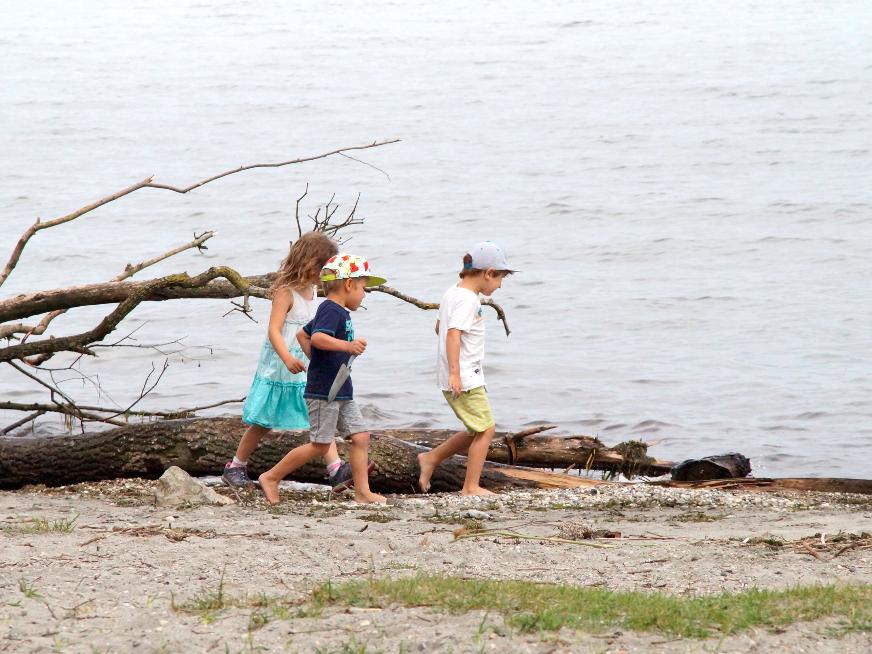 Beim Ausflug an den See gab es viel zu entdecken
