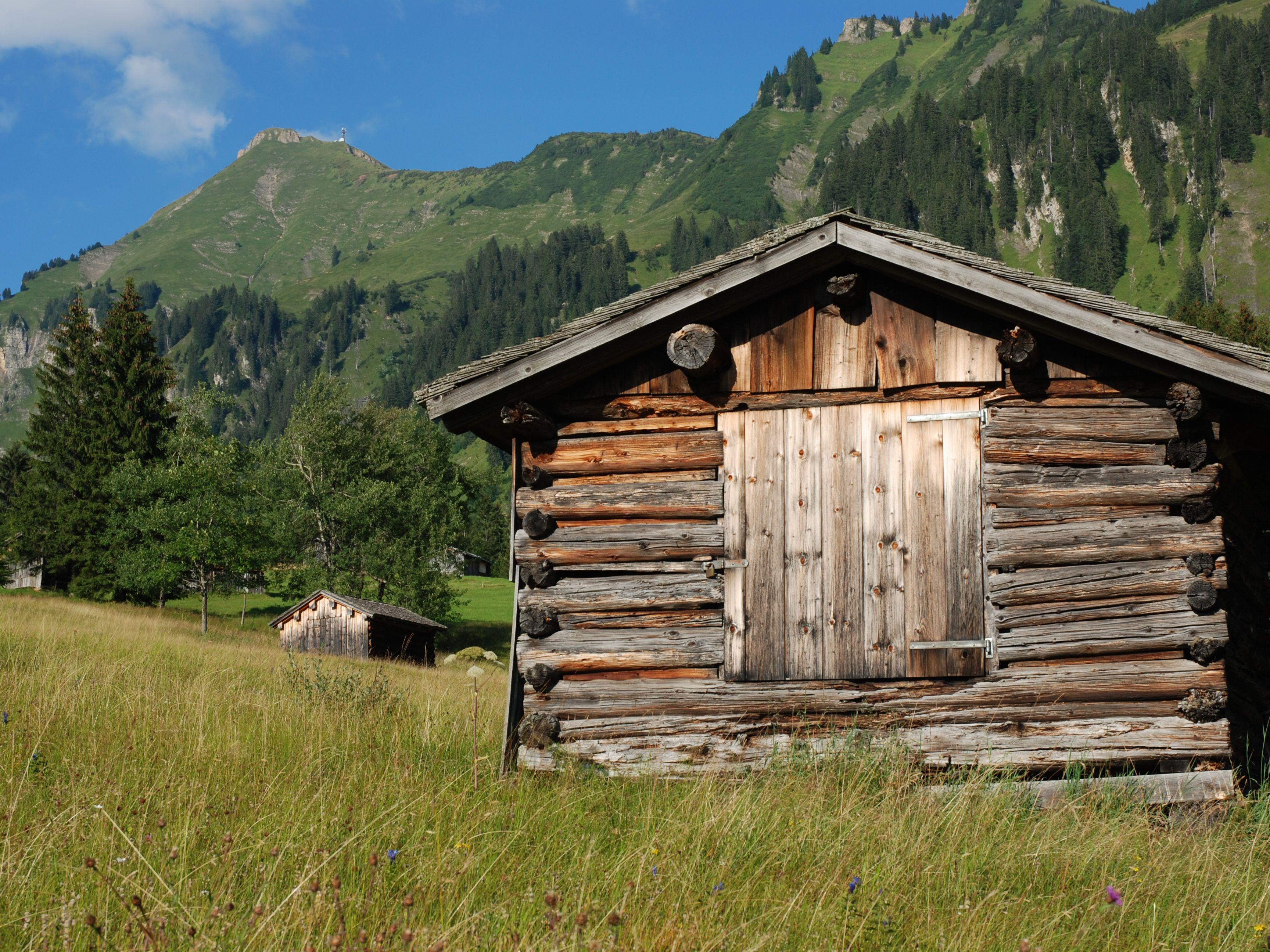 """Einblicke in die Bregenzerwälder Alpwirtschaft bekommen Wanderer am Themenweg """"Alpgang""""."""