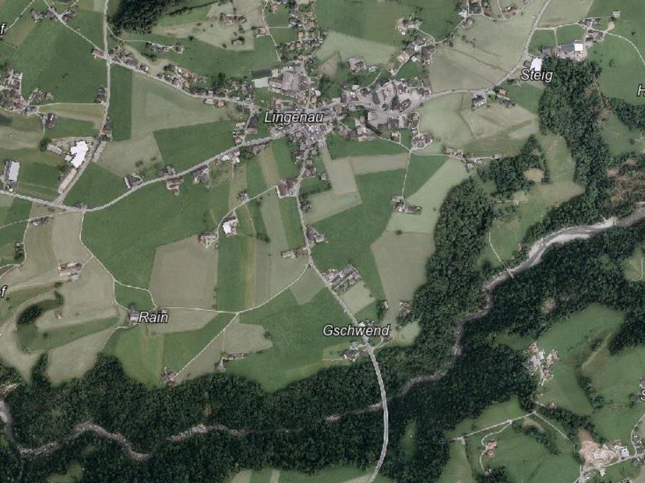 In Lingenau gerieten deutsche Urlauberkinder in eine Notlage.