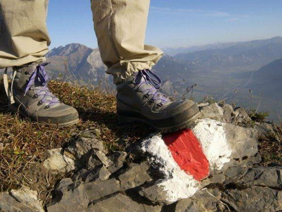 Wien - Nizza in vier Monaten: Forscher untersuchen wandernd die Alpen