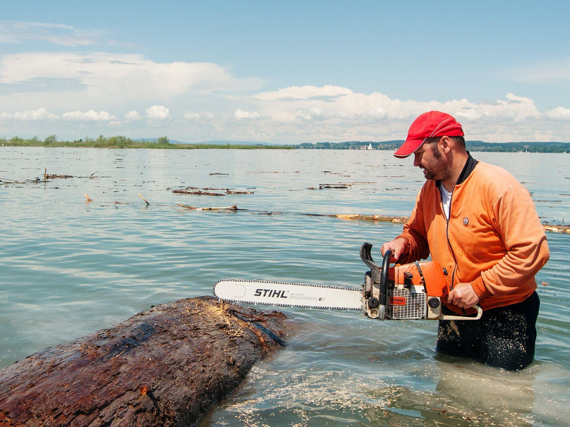 Dr. Martin Kloser holzt mit Leidenschaft im Bodensee.
