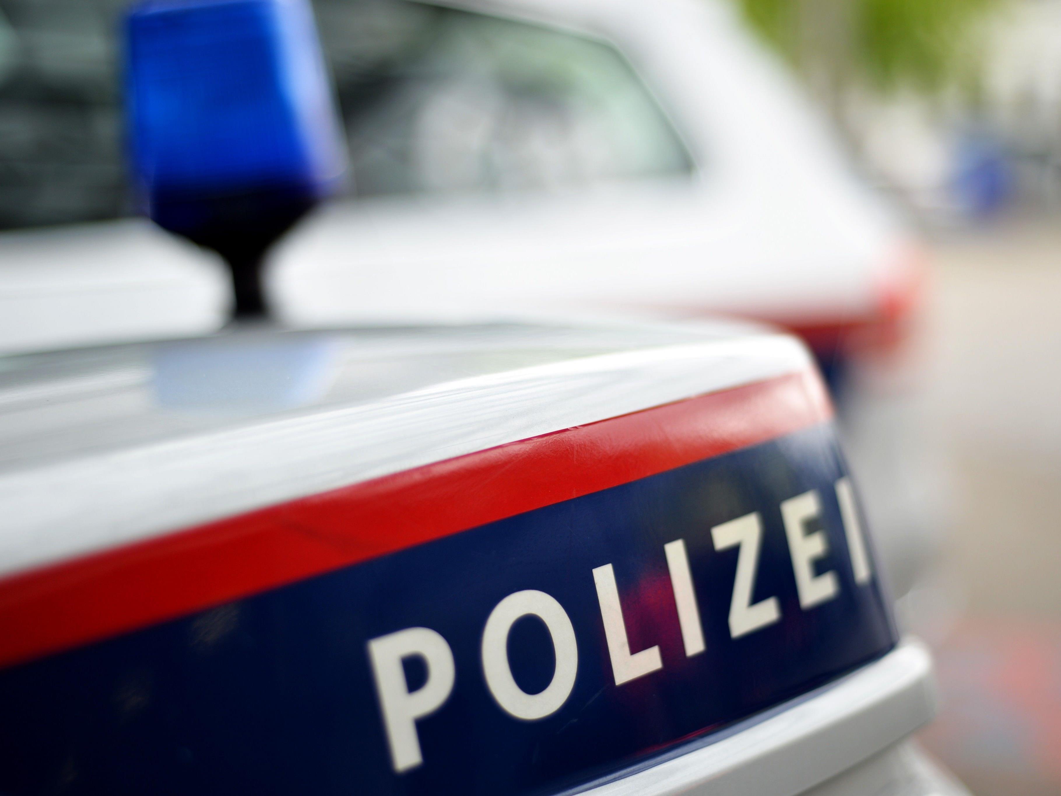Ein Wiener Autodieb hielt die Polizei im Burgenland auf Trab.