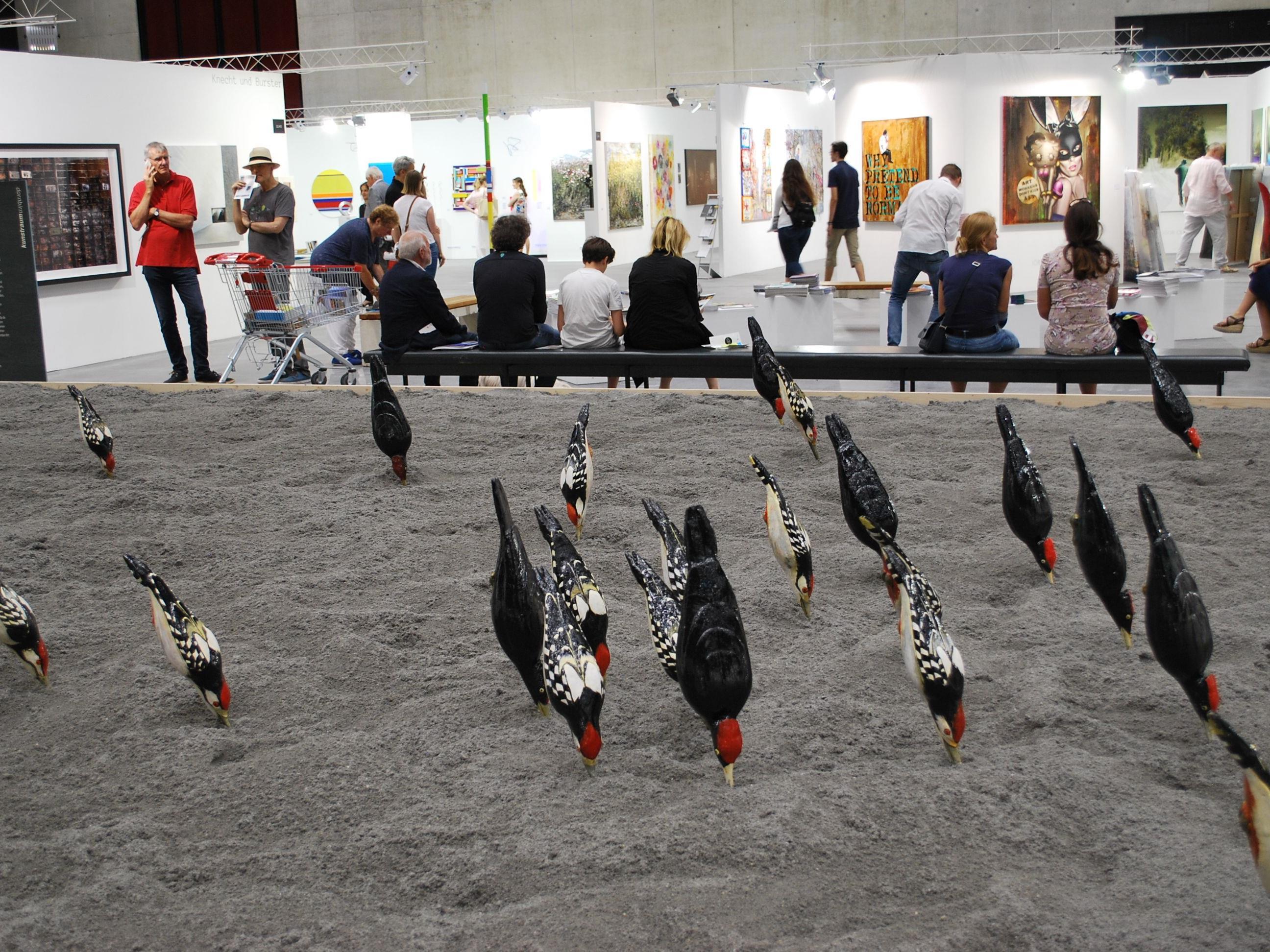 Diese Vögel werden auch bei der nächsten Ausstellung des Kunstraum Dornbirn eine Rolle spielen.