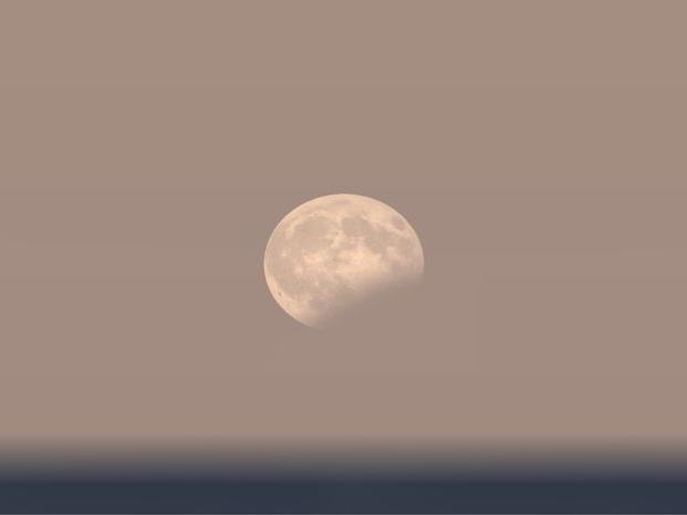 Eine Computersimulation der bevorstehenden Mondfinsternis