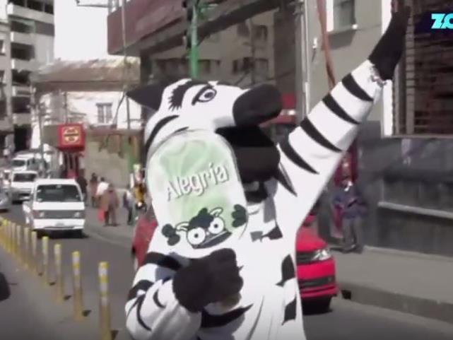 In Bolivien regeln freiwillige Zebras den Verkehr.
