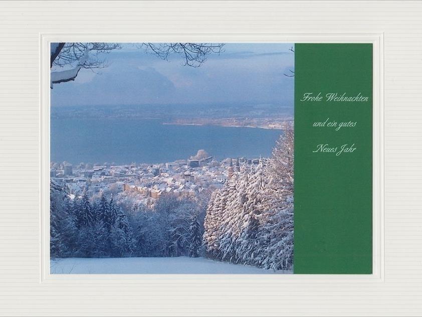 Blick von der Nesseldohle auf die Stadt Bregenz