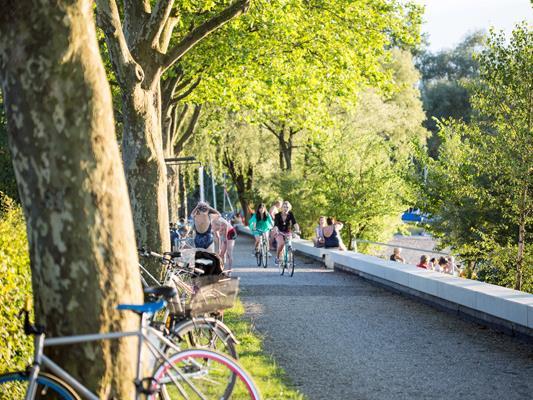 """Tipps für Radbegeisterte bietet der überarbeitete Info-Folder """"Rund um den Bodensee"""" vom aha."""
