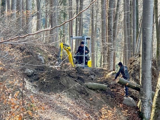 Die Reparaturarbeiten beim Wanderweg im Buchenwald gestalteten sich aufgrund von Entwurzelungen zum Teil aufwändig.
