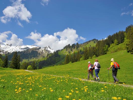Senioren wandern in den Bergen