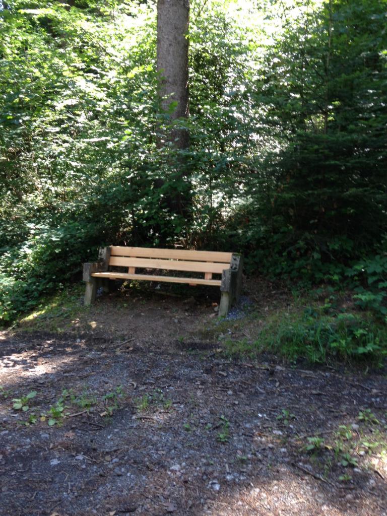 Waldweg Ambergschlössle